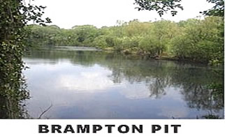 brampton PIT2