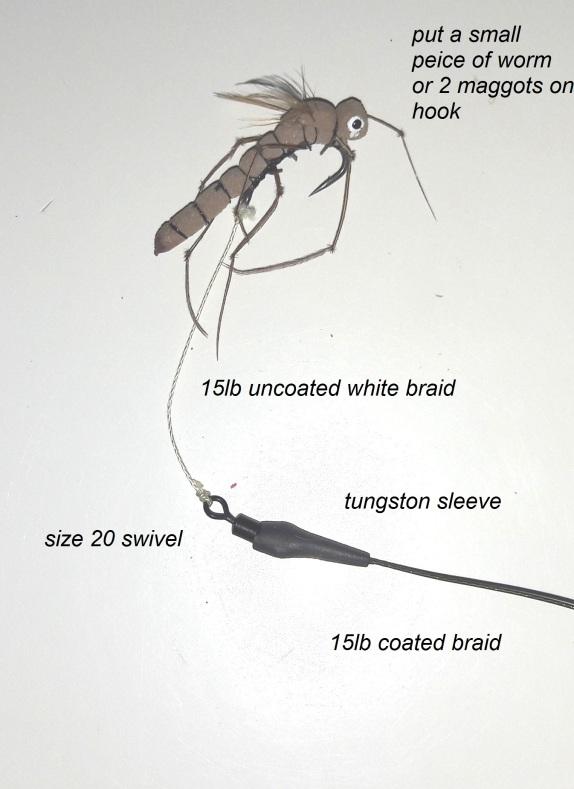 bug-rig
